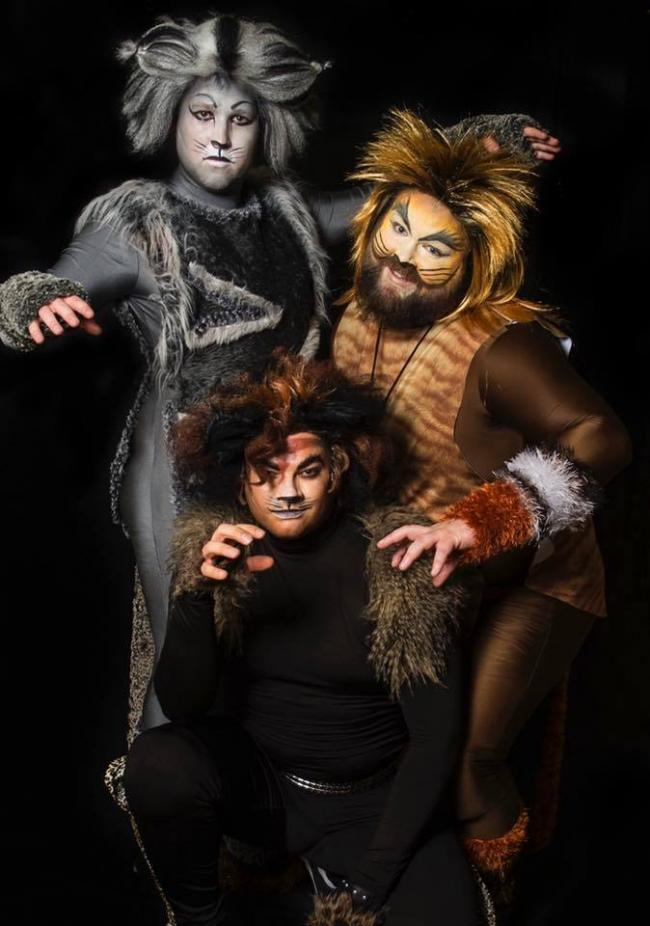 Redditch Operatic Society will be bringing Cats the musical to Redditch's Palace Theatre