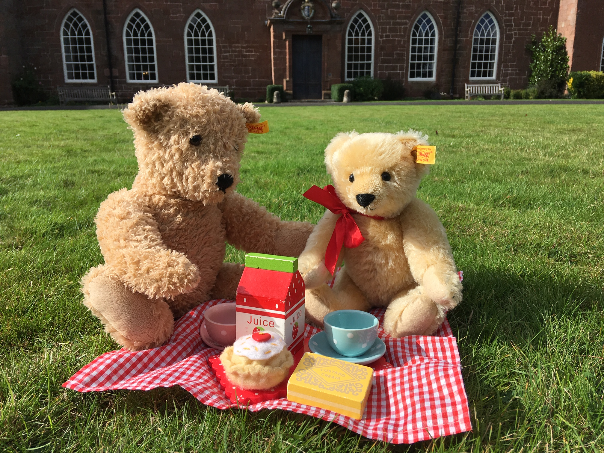 Terrific Teddies & Toys