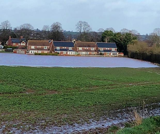 Halesowen News: Homes at Kings Acre Road, Hereford, surrounded by Storm Dennis floodwater. Picture; Ben Goddard