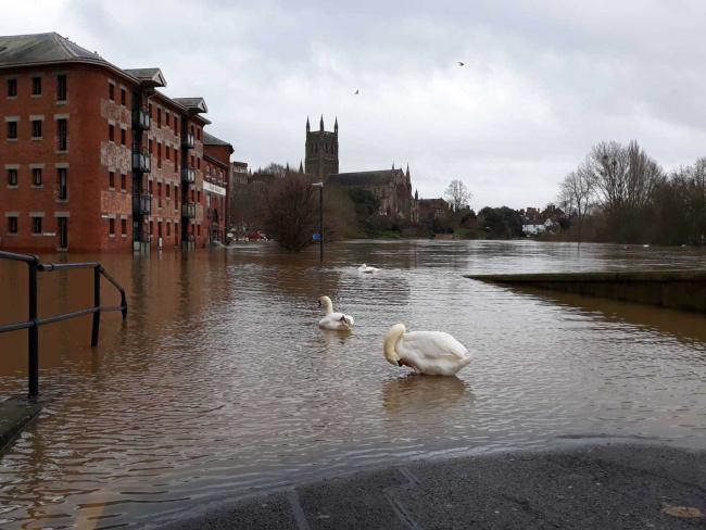 FLOOD: Worcester has been heavily affected
