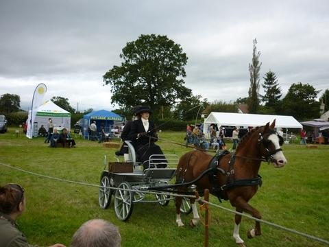 Country show proves a popular day out in Romsley