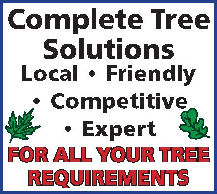 complete tree solutions