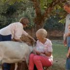 Halesowen News: Fans chuckle at Mary Berry's bid to milk a goat