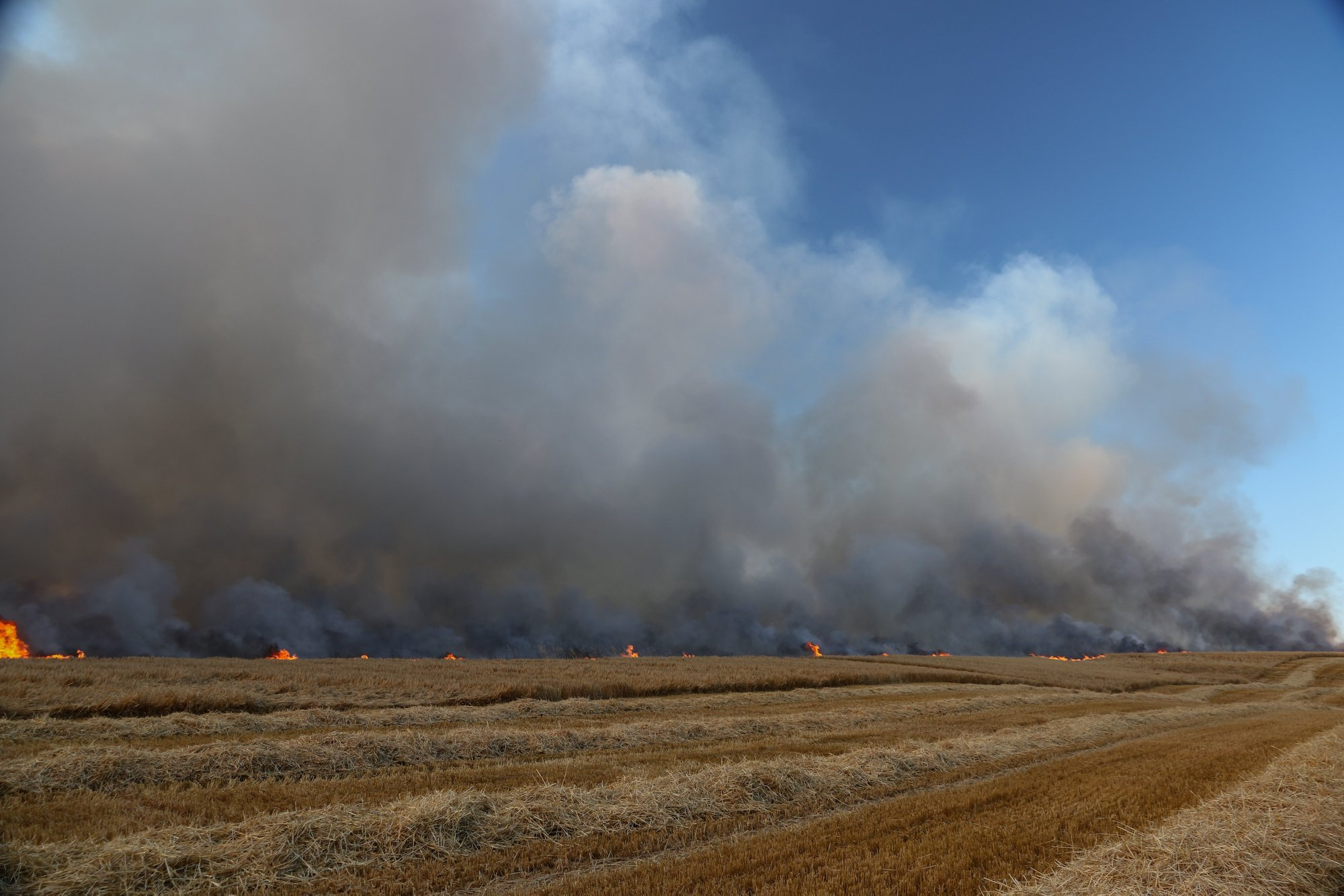 A farmland fire earlier this week near Inkberrow. Photo: Paul Wilde
