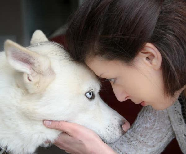 Nikki Brown helps dogs with behavioural problems find loving homes.
