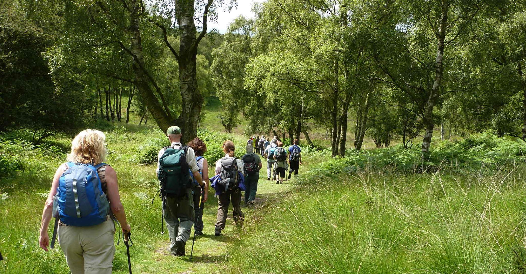 Two walks will take place from Kinver Community Library on Tuesday June 4.