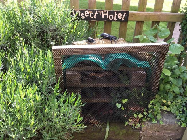 The insect hotel in the sensory garden at Bromsgrove Pre-Prep School. Picture: Bromsgrove School